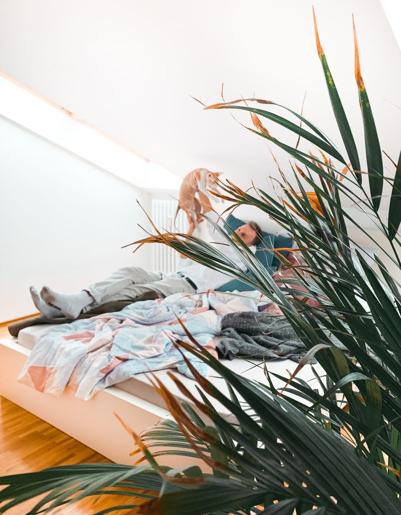 Bild durch Pflanzenblätter aufgenommen. Mann liegt im Bett und hält seine Katze liebevoll über seinem Kopf - Der 7. Himmel über Berlin