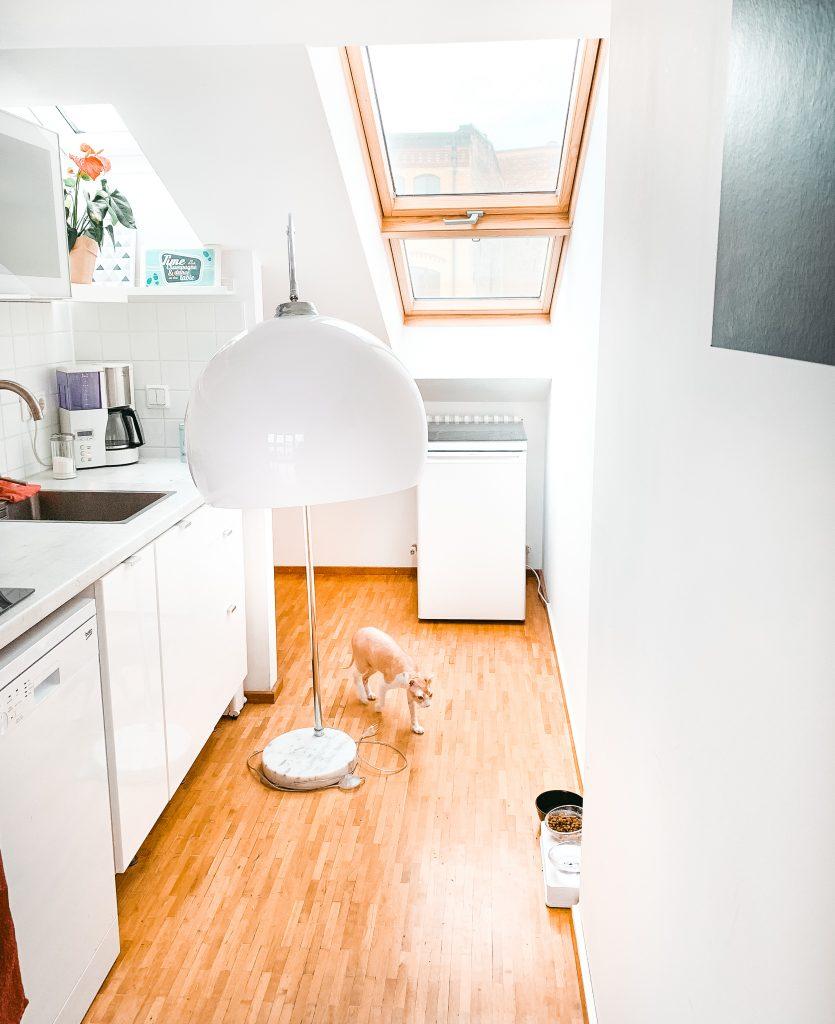 Blick in die frischbezogene Küche, in der noch eine Bogenlampe steht und die Katze rumrennt - Der 7. Himmel über Berlin