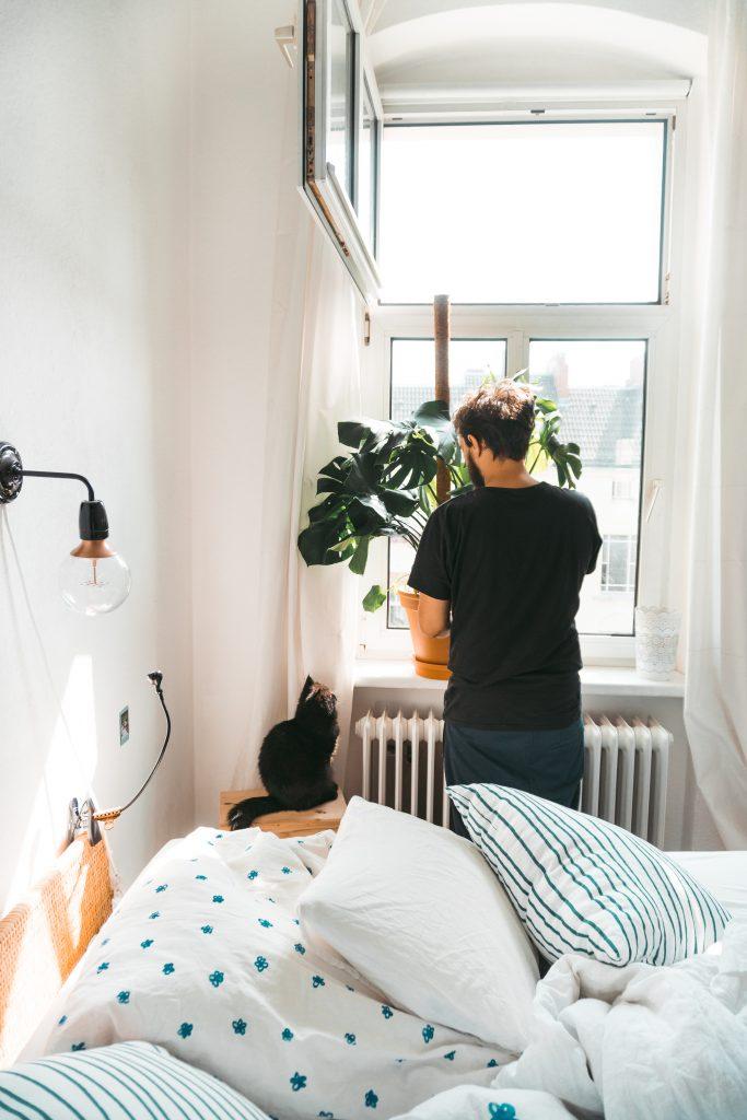 Fridlaas Freund und Kater Alfie betrachten die Monstera Deliciosa im Schlafzimmer
