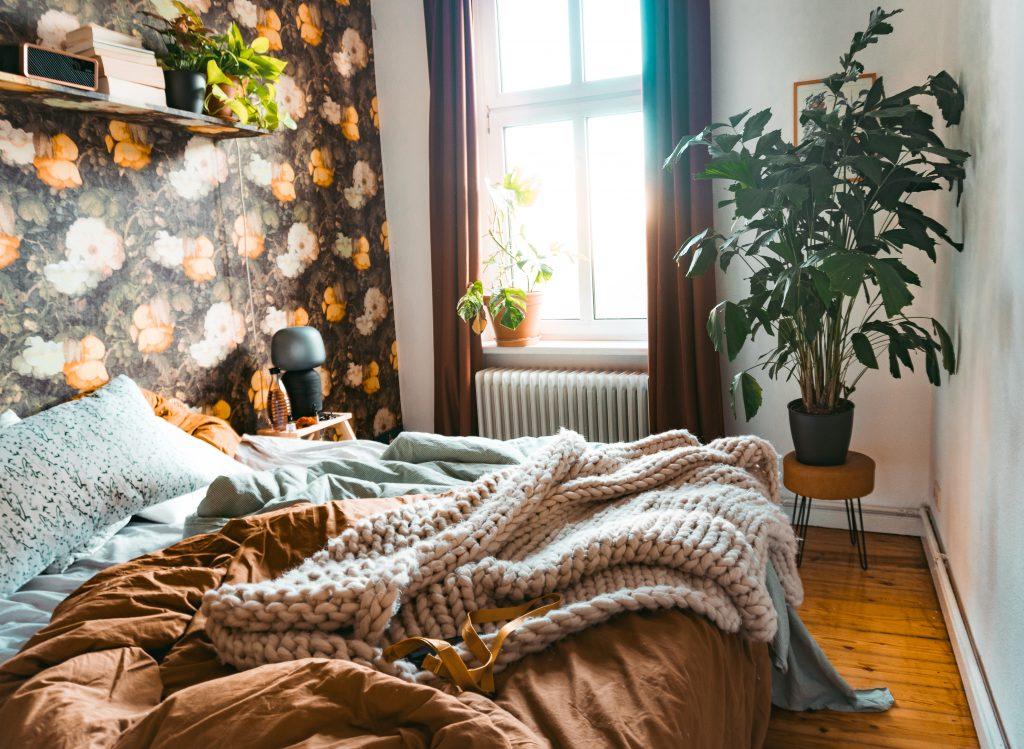 In Fridlaas Schlafzimmer ist eine neue Pflanze dem Urbanjungle eingezogen. Die Fischschwanzpalme (Caryota Mitis) von dem Start-Up Youplant